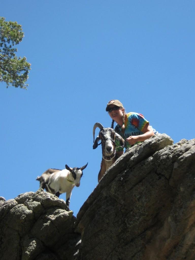 Nan_Goats
