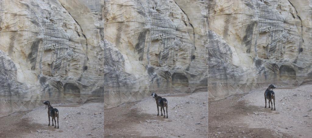 Cuzco_Triptych